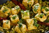 picture of paneer  - Mattar Paneer is a north Indian dish consisting of Paneerthe Indian cottage cheese and peas in a slightly sweet spicy sauce - JPG