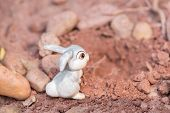 stock photo of rabbit hole  - Bunny going into the rabbit hole close up - JPG