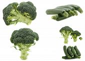 pic of zucchini  - green vegetables zucchini broccoli sprouts green Collage of green vegetables on white background - JPG