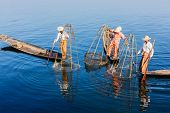Myanmar travel attraction landmark - three traditional Burmese fishermen balancing with fishing net at Inle lake in Myanmar famous for their distinctive one legged rowing style