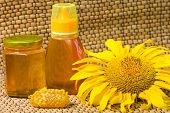 Honey In Jar And Sunflower