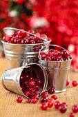 Cranberries In Buckets.