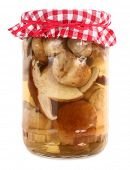 Boletus edulis porcini mushrooms preserved in jar