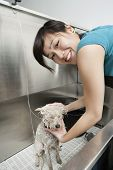 Portrait of young pet groomer washing dog in sink