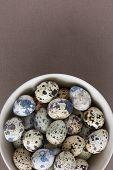 Bowl with quail eggs