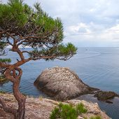 Mountain sea landscape.