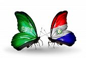 Two Butterflies With Flags On Wings As Symbol Of Relations Saudi Arabia And Paraguay