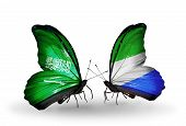 Two Butterflies With Flags On Wings As Symbol Of Relations Saudi Arabia And Sierra Leone