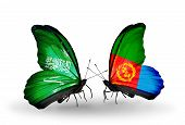 stock photo of eritrea  - Two butterflies with flags on wings as symbol of relations Saudi Arabia and Eritrea - JPG