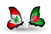 pic of bangladesh  - Two butterflies with flags on wings as symbol of relations Lebanon and Bangladesh - JPG