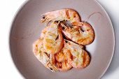 Delicious shrimps in a dish