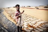 NEGOMBO, SRI LANKA - DECEMBER 31: Unidentified fisherman among dried fish on the beach in Negombo, Sri Lanka on the 31 December, 2014.