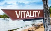 Vitality wooden sign with a lake background