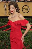 LOS ANGELES - JAN 25:  Alysia Reiner at the 2015 Screen Actor Guild Awards at the Shrine Auditorium on January 25, 2015 in Los Angeles, CA