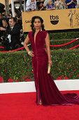 LOS ANGELES - JAN 25:  Jessica Pimentel at the 2015 Screen Actor Guild Awards at the Shrine Auditorium on January 25, 2015 in Los Angeles, CA