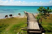 stock photo of houseboats  - Pier on a Blue Lake with Horses in Guatemala - JPG
