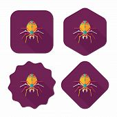 Spider Flat Icon With Long Shadow,eps10