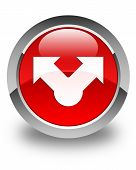Share Icon Glossy Red Round Button