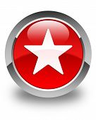 Star Icon Glossy Red Round Button