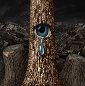 stock photo of cry  - Mother nature crying concept as a background of chopped wood and cut trunks with one surviving tree with an open eye crying a tear drop as a metaphor for failed conservation - JPG