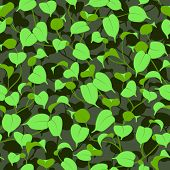 seamless ficus green leaves background