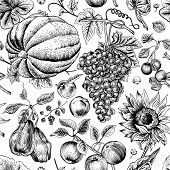 Autumn harvest. Vector seamless vintage pattern.