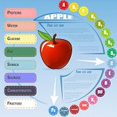 Healthy Vegetable Infographic with apple