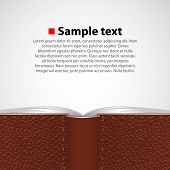 Open leather book background