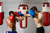 image of kickboxing  - Two kickbox fighters training in the gym - JPG