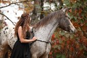 stock photo of appaloosa  - Pretty young woman with appaloosa horse in autumn - JPG