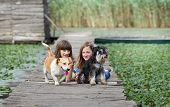 picture of dock a lake  - Two girls with dogs lying on wooden dock on the lake - JPG