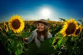young woman on blooming sunflower field in summer
