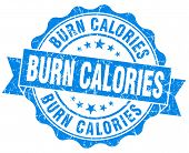 Burn Calories Blue Vintage Isolated Seal