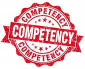Competency Red Vintage Isolated Seal