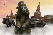 stock photo of cap gun  - Russian bears with the Kalashnikov guns on the Red Square - JPG