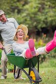 image of wheelbarrow  - Happy senior couple playing with a wheelbarrow in a sunny day - JPG
