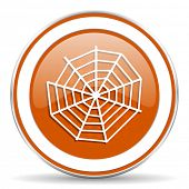 pic of spider web  - spider web orange icon  - JPG