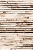 pic of bamboo  - Bamboo texture with natural patterns - JPG