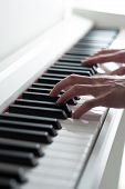 Постер, плакат: Man playing the piano Piano keys Piano playing Black and white keys Electronic piano