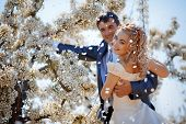 pic of wedding couple  - Wedding couple in spring nature - JPG
