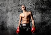portrait of young boxer on grunge background