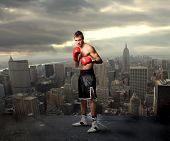 picture of boxing ring  - young boxer on the top of new york city - JPG