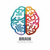 Постер, плакат: Human Brain sign