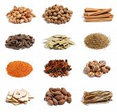 Dried spices on white background.