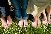 Healthy feet series: feet of men and women of different ages in the grass with daisies, seen from above