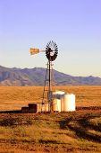 Windmill Vertical