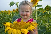 The Girl With A Huge Sunflower
