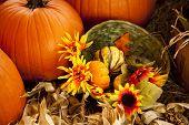 Thanksgiving Fall Setting