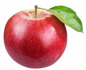 Ripe red apple with apple leaf. File contains clipping path. poster