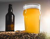 Homebrew Blond Beer On Pilsner Grain Heap poster